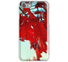 Fall Leaves at Metro Campus iPhone Case/Skin