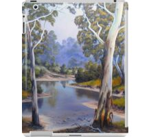 Winding River iPad Case/Skin