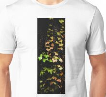 Autumn Spectrum Unisex T-Shirt
