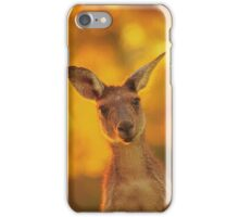 What's Up, Yanchep National Park iPhone Case/Skin