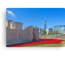 Poppies in the Moat Canvas Print