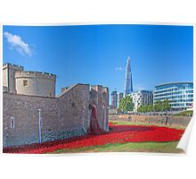 Poppies in the Moat Poster