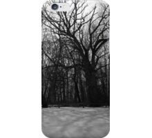 Snow in Black and White iPhone Case/Skin