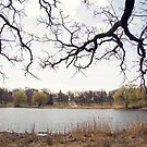 Pond by KendraJKantor