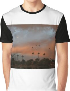 Birds fly against a colorful sky Graphic T-Shirt