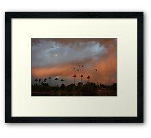 Birds fly against a colorful sky Framed Print