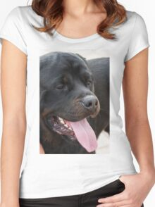 labrador retrive Women's Fitted Scoop T-Shirt