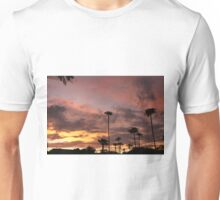 Painting in the sky Unisex T-Shirt