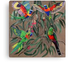 Birds from Paradise. Rosellas Canvas Print