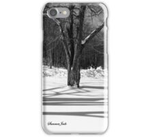 That Cold Winter Sun ~ On Snow iPhone Case/Skin