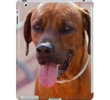 labrador retrive iPad Case/Skin
