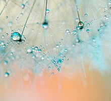 droplets of aqua by Ingz