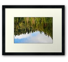 abstract autumn pine forest reflection in river Framed Print