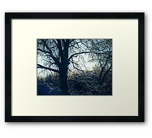 By Moon - part 1 Framed Print