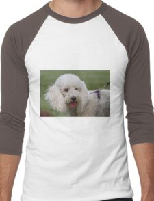 cute dog Men's Baseball ¾ T-Shirt