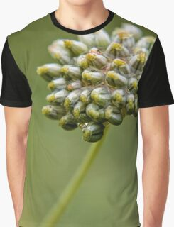Parsley Seed Pods Macro (1) Graphic T-Shirt
