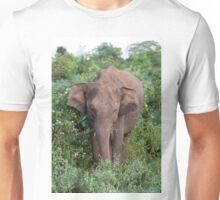 Elephant, Udawalawe, Sri Lanka Unisex T-Shirt
