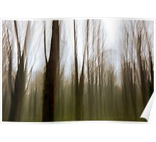 abstract motion blur of trees Poster