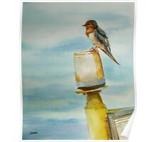 Monday Blues, pacific swallow watercolor painting Poster