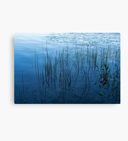 Green and Blue Serenity - Smooth Wetland Morning Canvas Print
