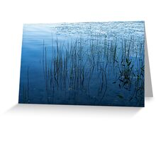Green and Blue Serenity - Smooth Wetland Morning Greeting Card