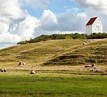 Danish landscape by Ovation66