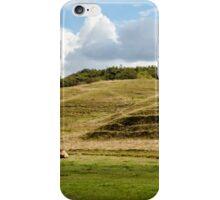Danish landscape iPhone Case/Skin