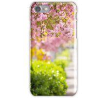 pink blossomed sakura flowers street iPhone Case/Skin