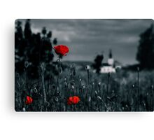 big fresh poppies in the field Canvas Print