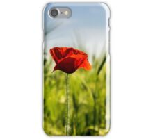 red poppy in the wheat field iPhone Case/Skin
