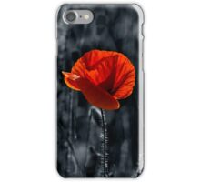 big fresh poppy in the field iPhone Case/Skin