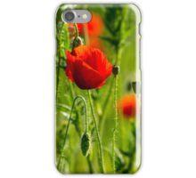 big fresh poppy in the field iPhone Case/Skin