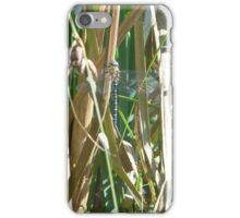 blue dragon-fly iPhone Case/Skin