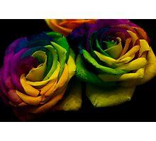 Rainbow RoseS Photographic Print