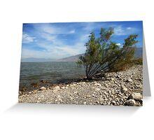 Rocky Paradise (Willard Bay Beach) Greeting Card