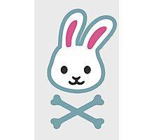 rabbit and the bones   Photographic Print