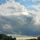 Summer Storms by Eileen McVey