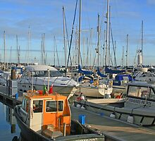 Poole Quay Boat Haven by RedHillDigital