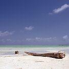 Caribbean Dream by Kasia-D