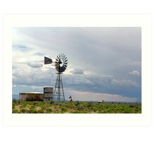 White Wild Horses Taking In The Western Countryside Art Print