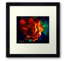 A Rose By Any Other Name Is Still A Rose Framed Print