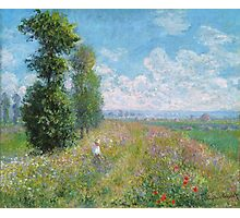 Claude Monet - Meadow With Poplars Photographic Print