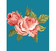 Vintage Pink Colored Roses  Photographic Print