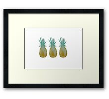 Watercolor Pineapples  Framed Print