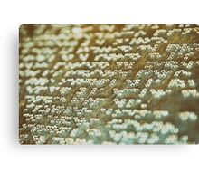 Braille Text Writing On Stone Canvas Print