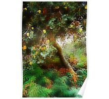 A magical Tree....on a very grey day Poster