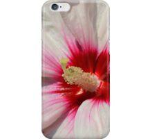 Raspberry Throated Rose Mallow iPhone Case/Skin