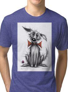 Posh paws the pooch Tri-blend T-Shirt
