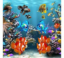 Aquarium Sealife Fish Photographic Print