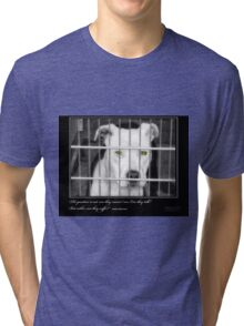 Can They Suffer? - Stray Muses™ A Language Unspoken Tri-blend T-Shirt